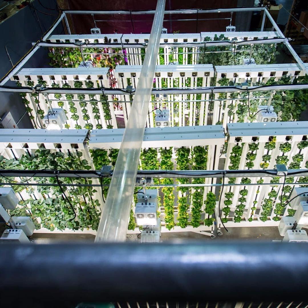 Pin On Vertical Farming