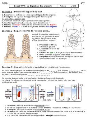 Devoir Digestion.pdf notice & manuel d'utilisation | svt ...