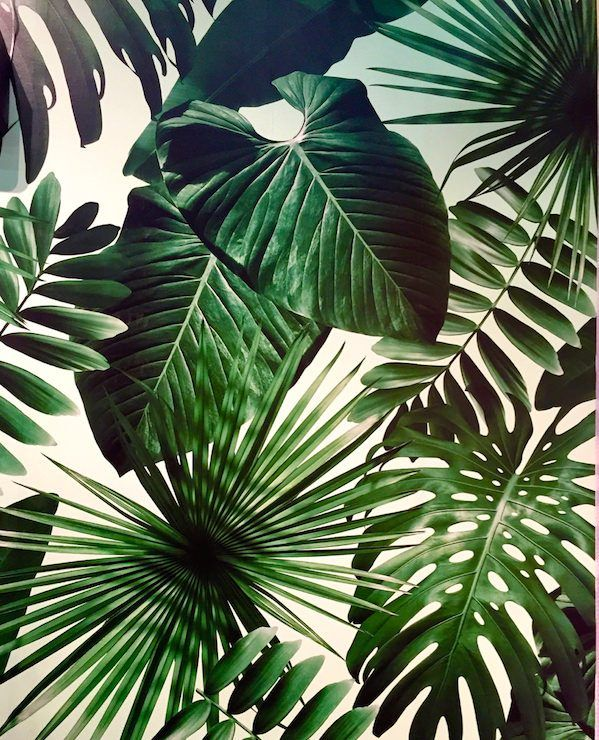 Tropical Print Plants Pattern Palms Decorating