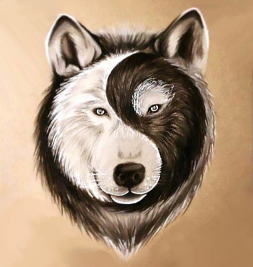 Best Yin Yang Wolf Face Tattoo Design Wolf Face Tattoo Wolf Face Yin Yang Wolf