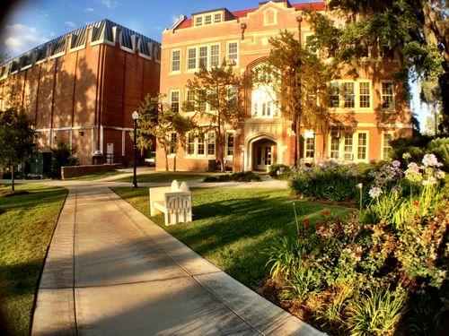 Florida state university admissions essay