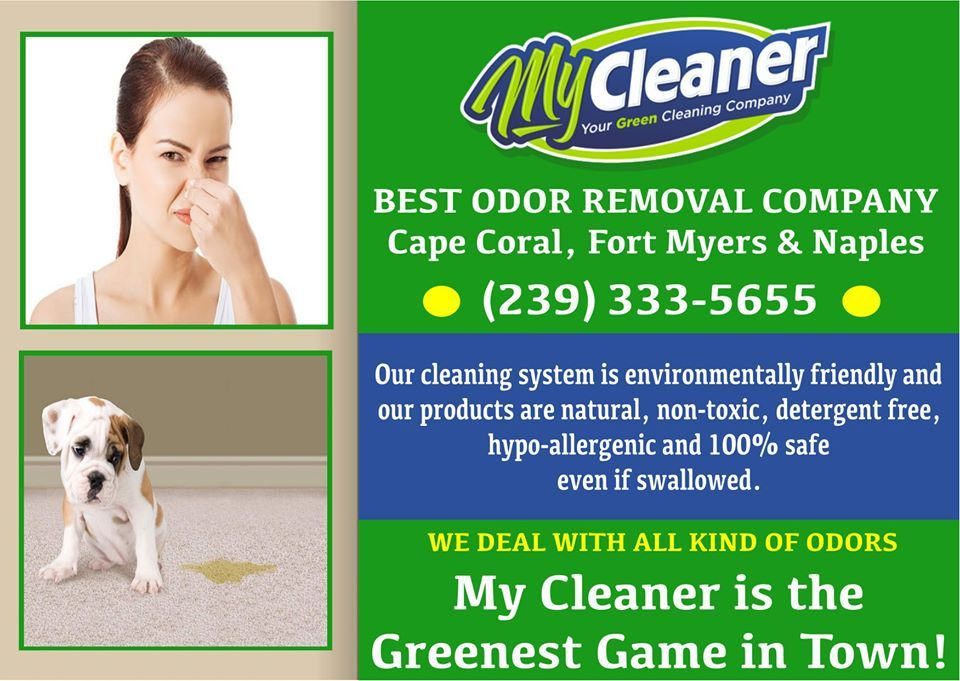 Our cleaning system is environmentally friendly and our products are natural, non-toxic, detergent-free, hypo-allergenic and 100% safe even if swallowed.  My Cleaner is the Greenest Game in Town!  #petodorremoval #petodorremovalservice #professionalpetodorremoval #petodorremovalserviceincapecoral #capecoralflorida