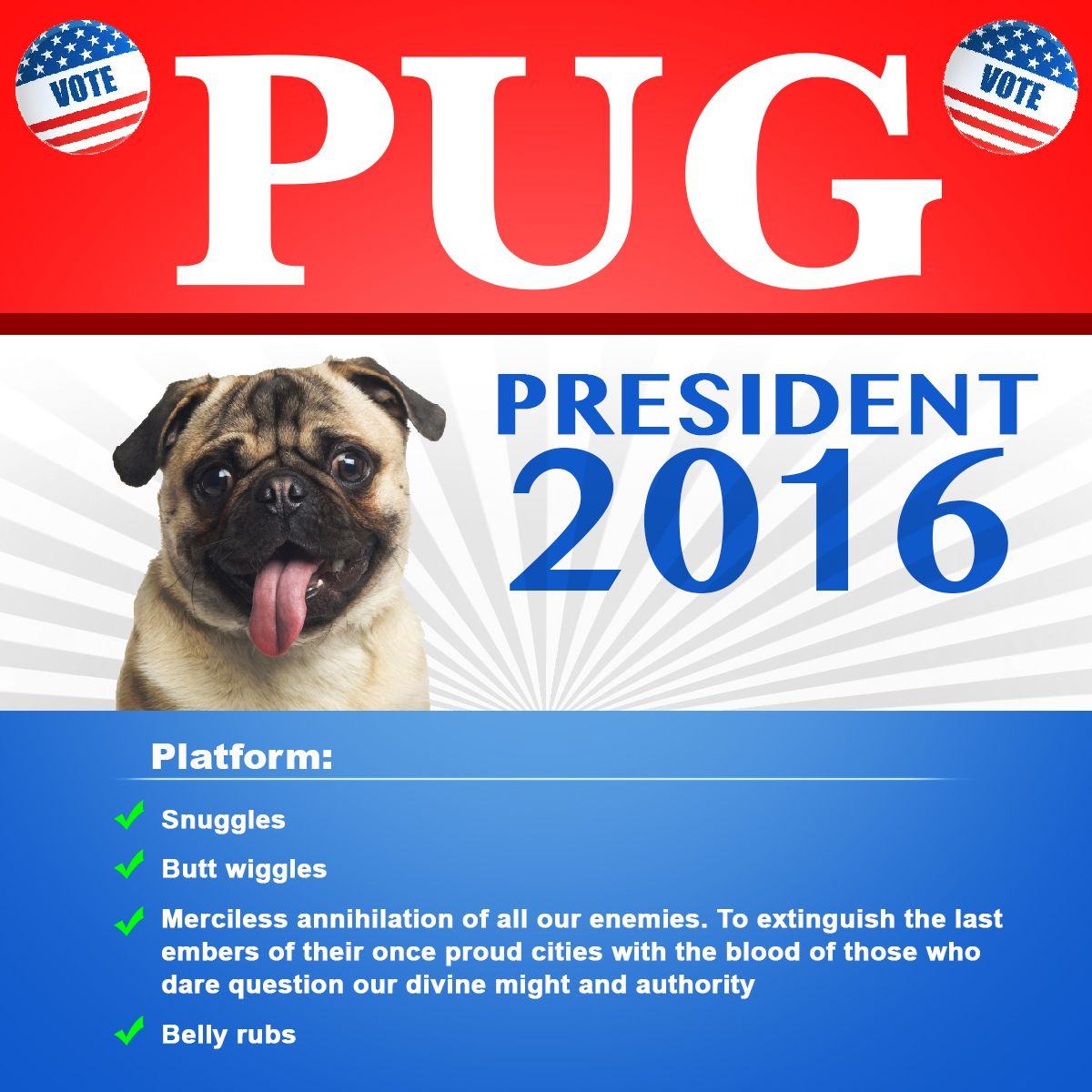Get 15 Off All Orders From Prettypugpics Com Use The Code