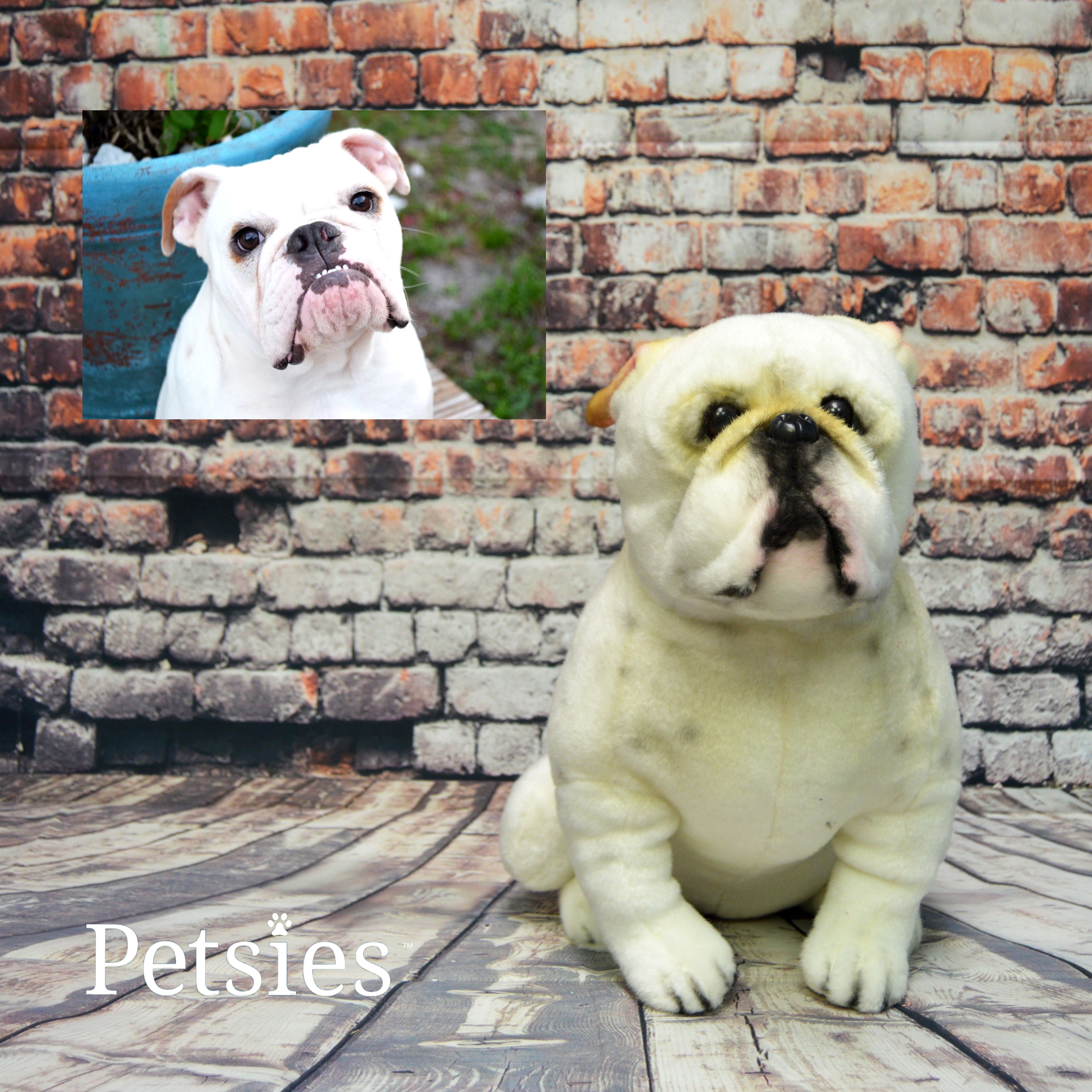 Turn Your Pet Into A Plush With Petsies Budsies Com Custom Stuffed Animal Pets Your Pet