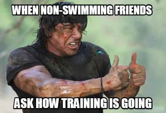 Funny Memes About Life Struggles : Swimming memes that perfectly describe swimmers memes