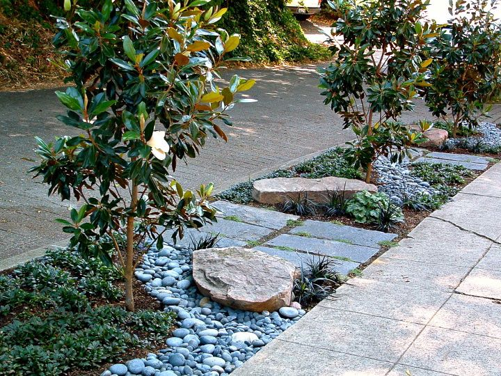 Before And After Michael Muro Sidewalk Landscaping Front Yard Landscaping Front Landscaping