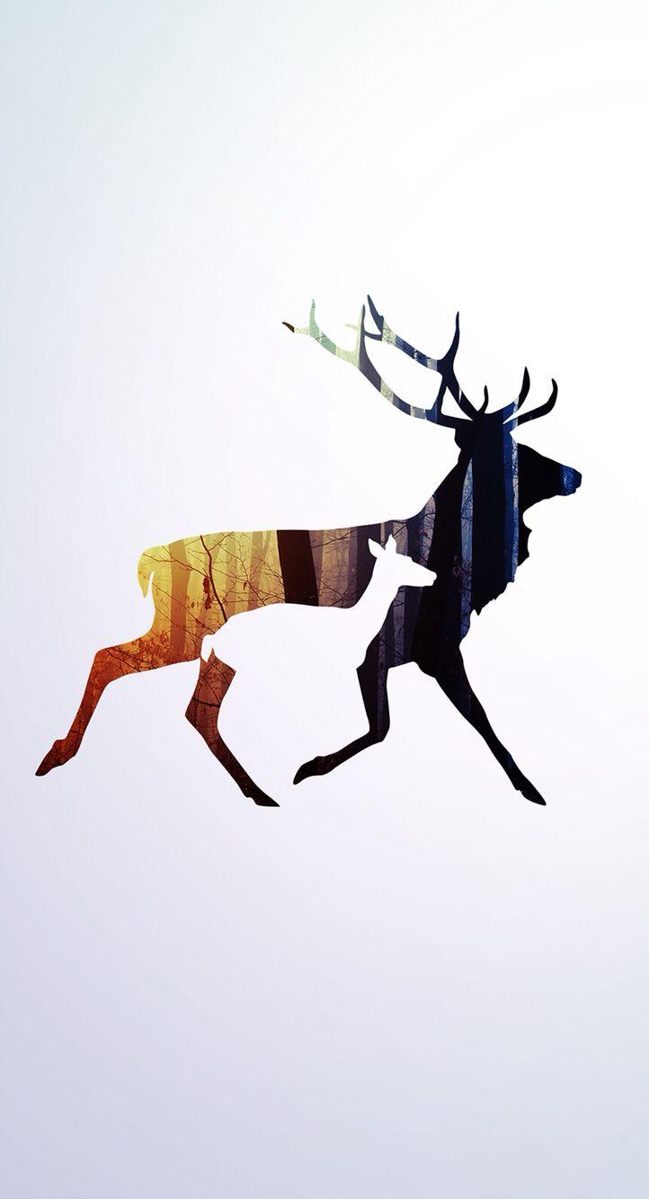 Deer Iphone Wallpaper Deer Wallpaper Hunting Wallpaper Moose Pictures