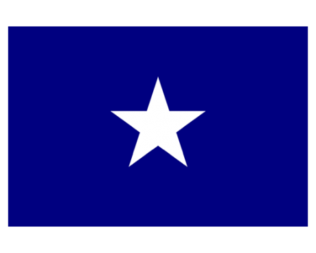 Image result for bonnie blue flag image