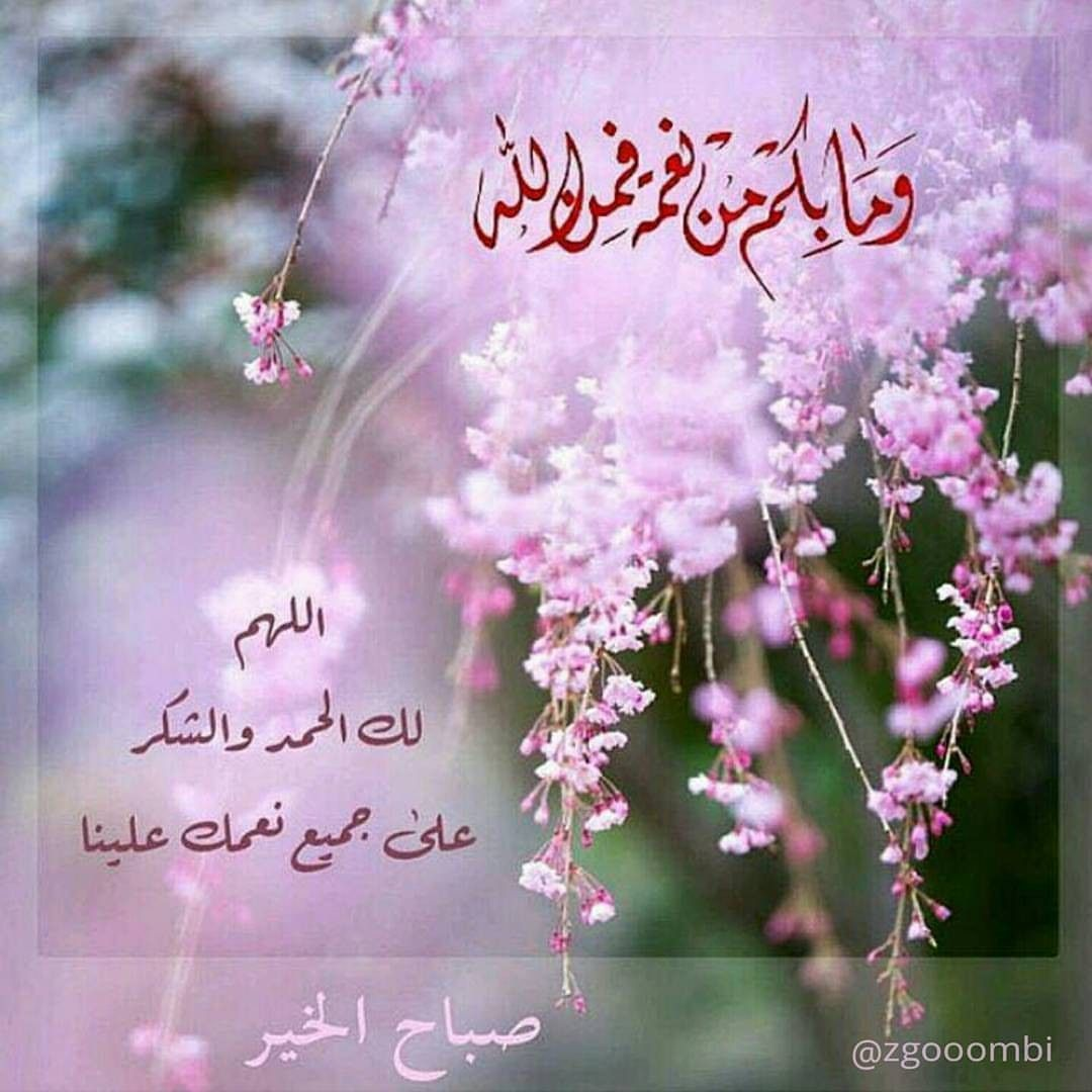 Pin By زهرة النرجس On جميل الكلم Good Morning Flowers Good Morning Beautiful Images Good Morning Greetings