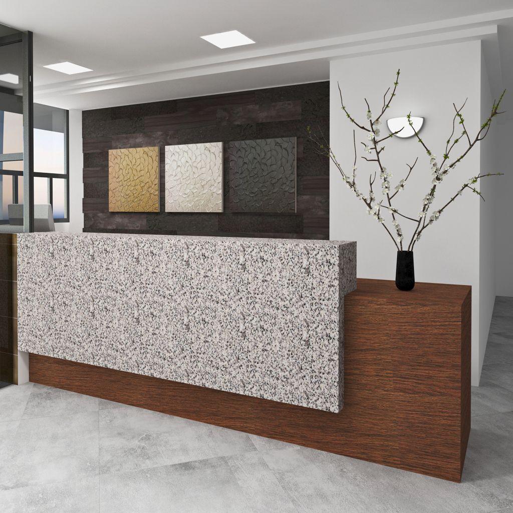 Dise o interior moderno contemporaneo lobby edificio for Diseno de muebles de oficina modernos