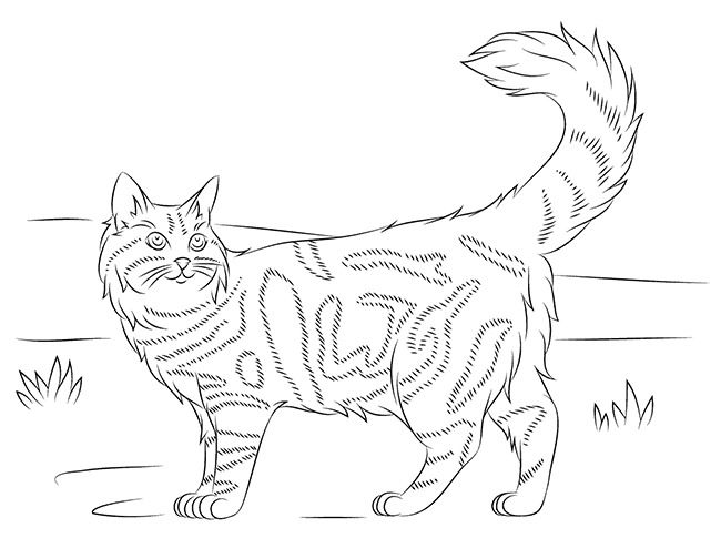 Cat Shape Template Animal Templates Cat Coloring Page Free