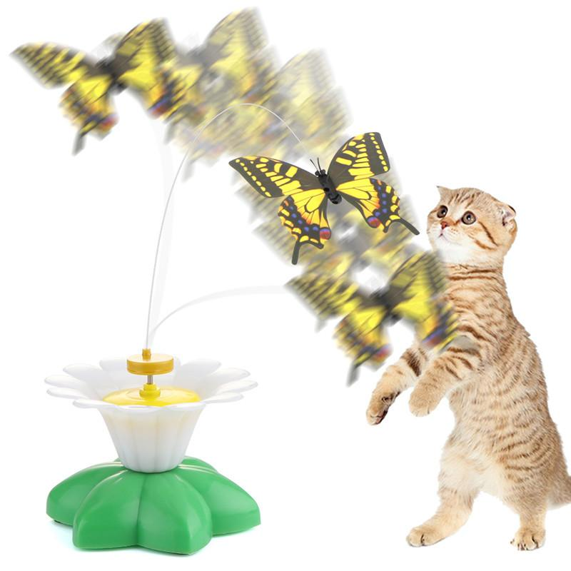 Park Art|My WordPress Blog_Cat Fishing Pole Toy Petsmart