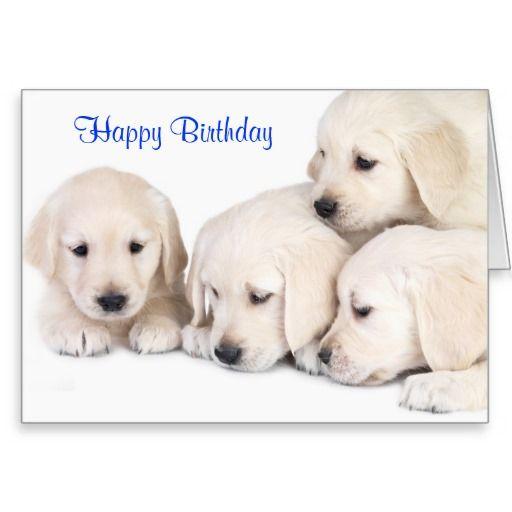 Happy Birthday Labrador Retriever Puppies Card From Zazzle