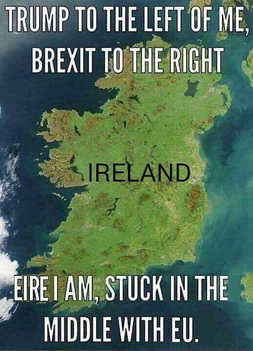 Happy St Patricks Irish Funny Irish Memes Irish Jokes