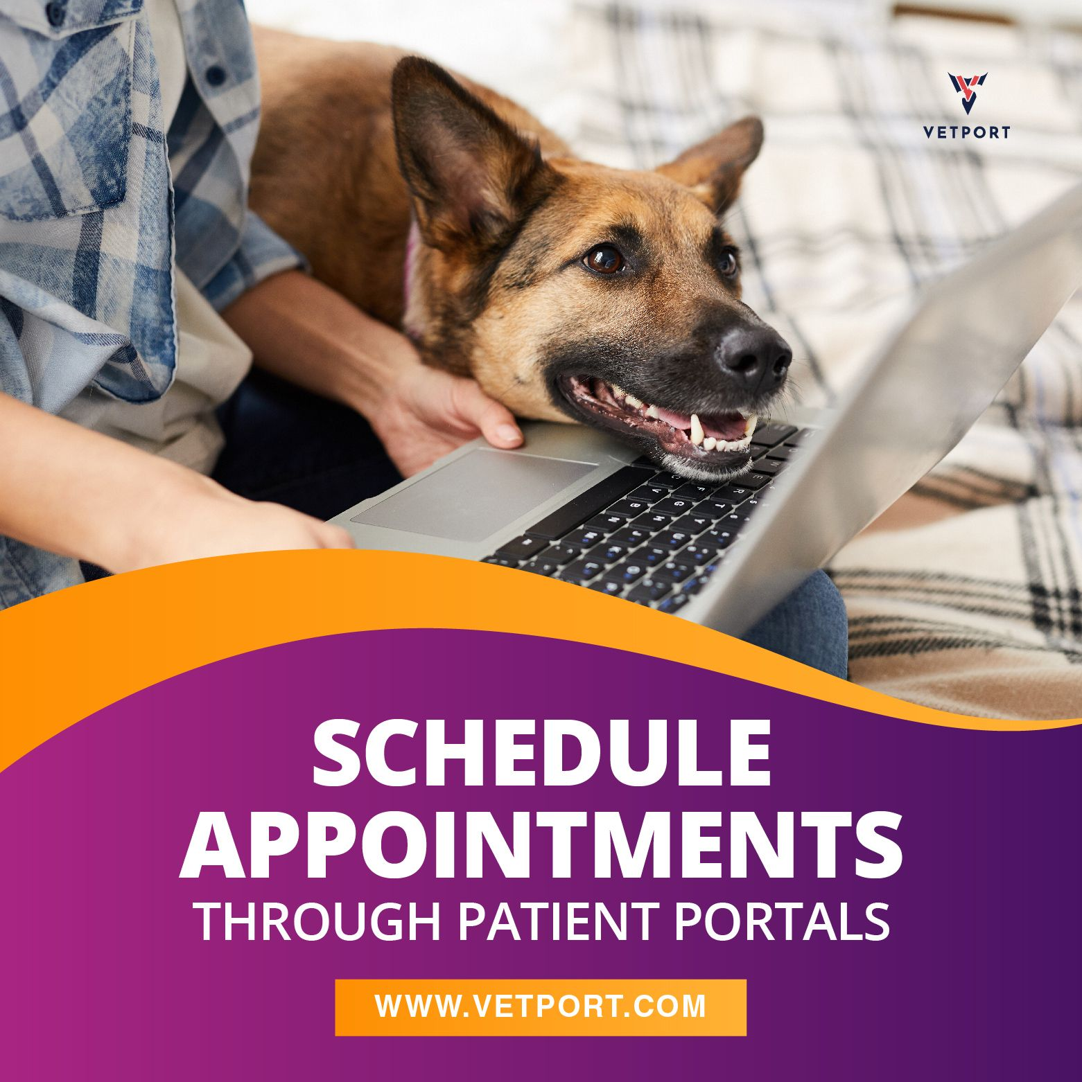 Scheduling appointment online, viewing health records and