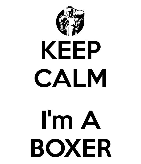 i'm a boxer - Google Search