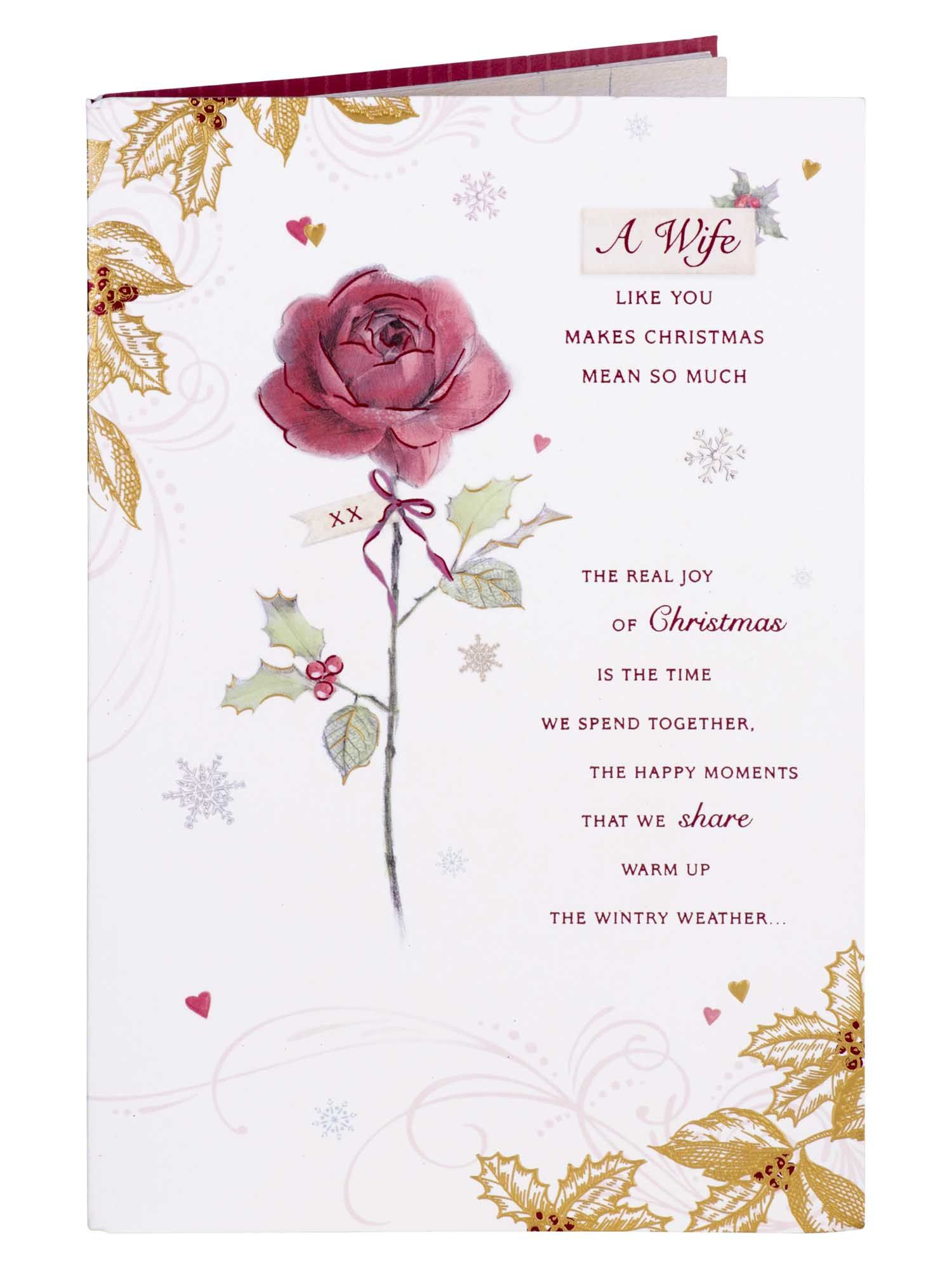 Animals and Mistletoe Wife Christmas Card Cards