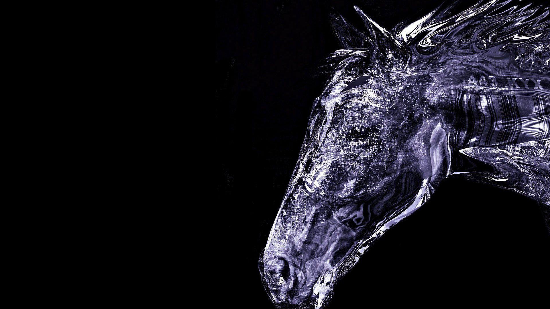 2014 3d horse | HD WallpaperS 2015 | Pinterest | Horse ...