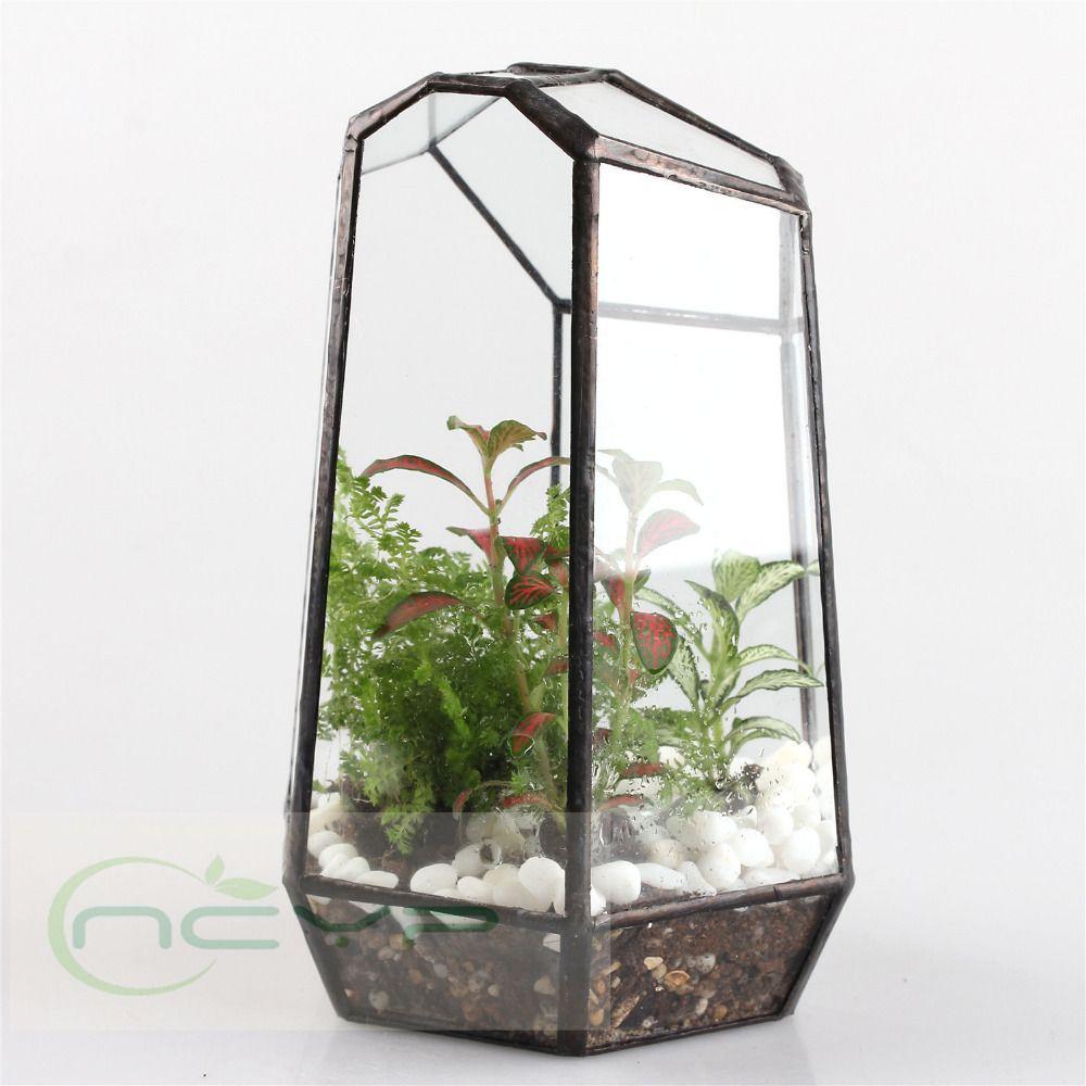 caixa de vidro irregulares bonsai mesa suculentas terrario de caixa de vidro irregulares bonsai mesa suculentas terrario de vidro geometrica caixa do plantador de vaso