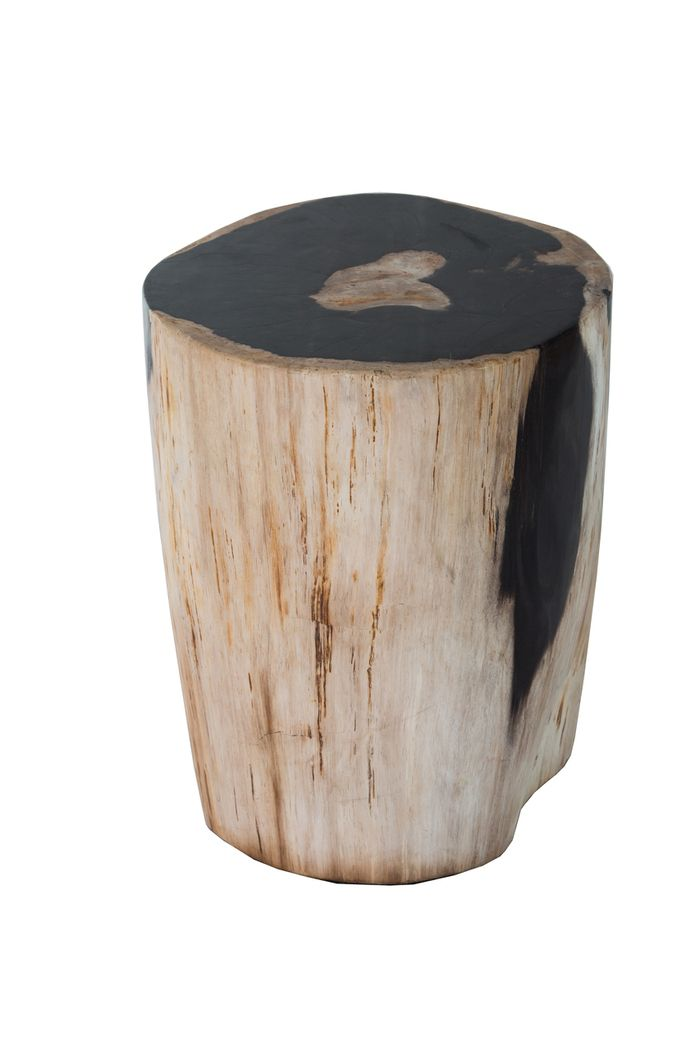 Santa Monica Petrified Wood Stool - Petrified Forests