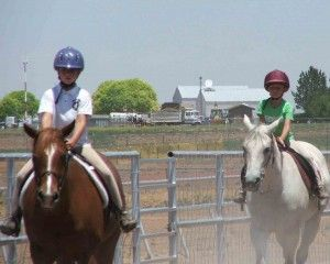 How Long Does It Take To Learn To Ride A Horse? | The Riding Instructor