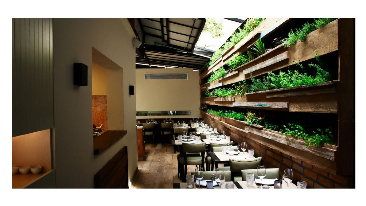 hall garden with aromatic herbs in restaurant in SP Brasil