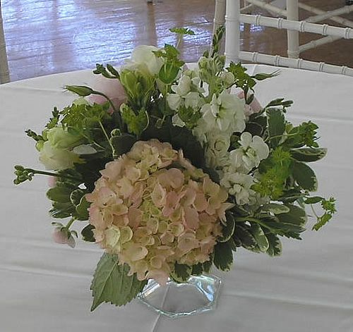 Centerpiece in glass compote-Hydrangeas, Stock and Freesia #RoseOfSharon
