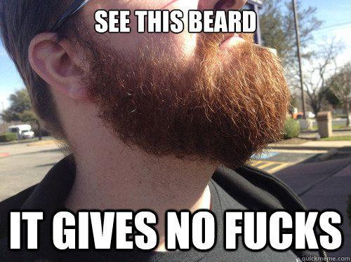 Funny Beard Meme Pics : See this beard it gives no fucks jacks beard meme fear the