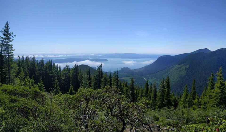 Mount Walker — Washington Trails Association (dogfriendly
