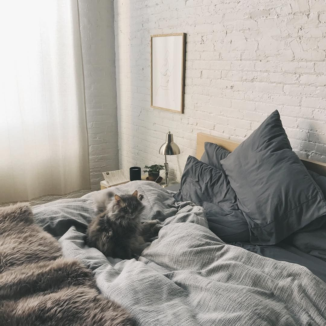 Exposed Brick Bedroom Design Sensual Bedroom Paint Colors Master Bedroom Accent Wall Bedroom Curtains Harry Corry: Can't Decide Who's Lazier Tho.