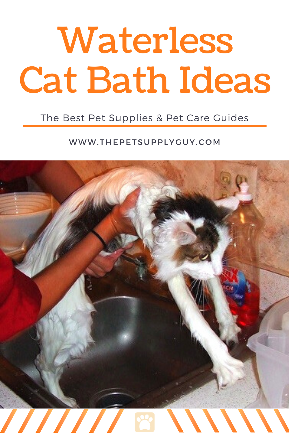How To Wash A Cat Without Water In 2020 Cat Care Tips Cat Care Cat Bath