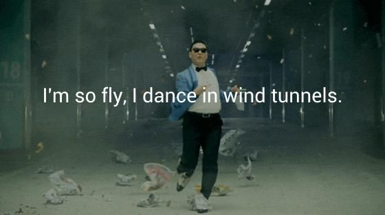 I'm so fly, I dance in wind tunnels.