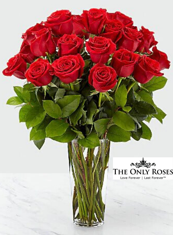 3b29857259dedc13caef60560933e88f - Rose Lawn Memorial Gardens Brownsville Tx