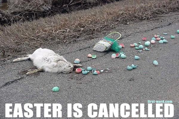 Funny Meme For Easter : Easter jokes