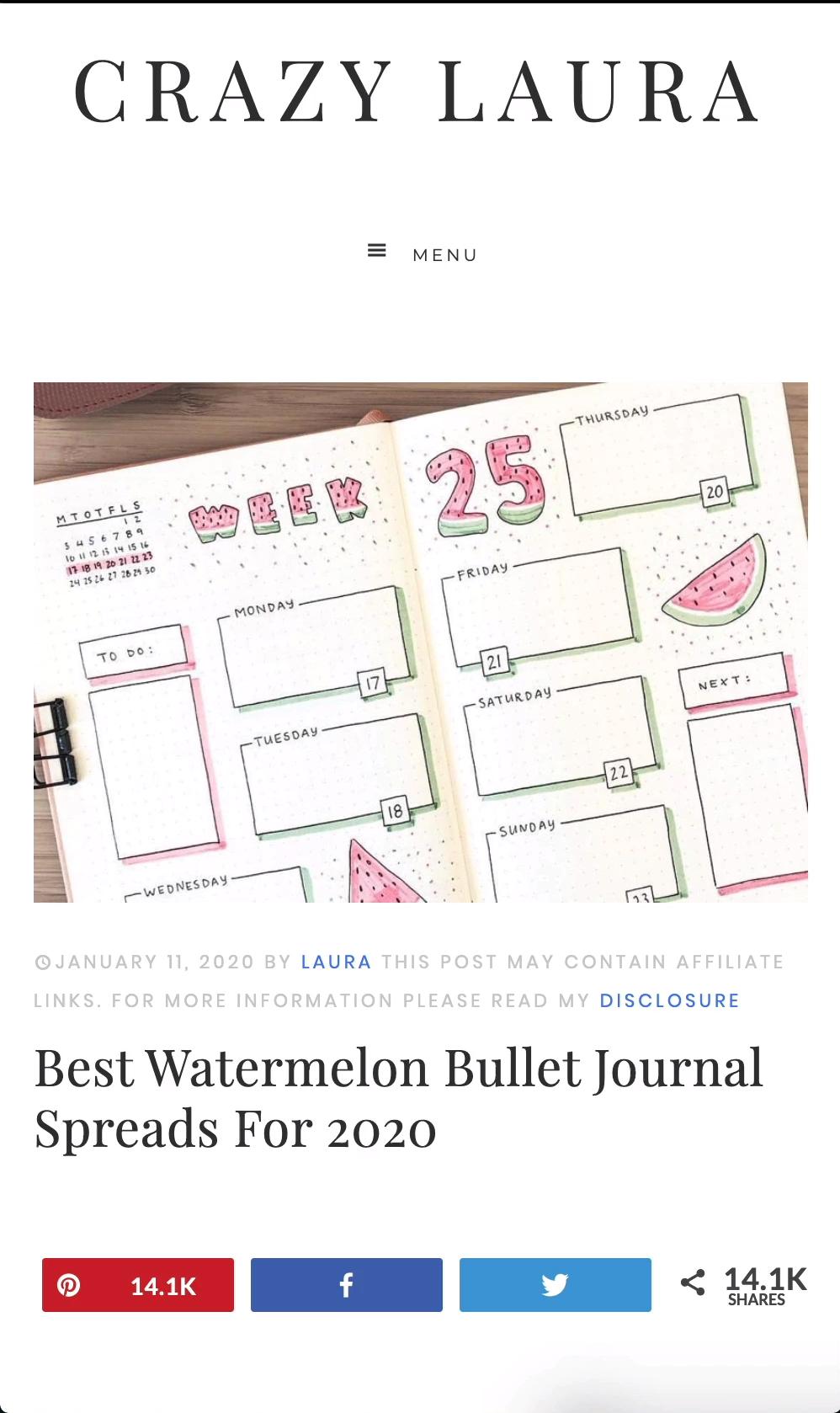 Best Watermelon Bullet Journal Spreads For 2020