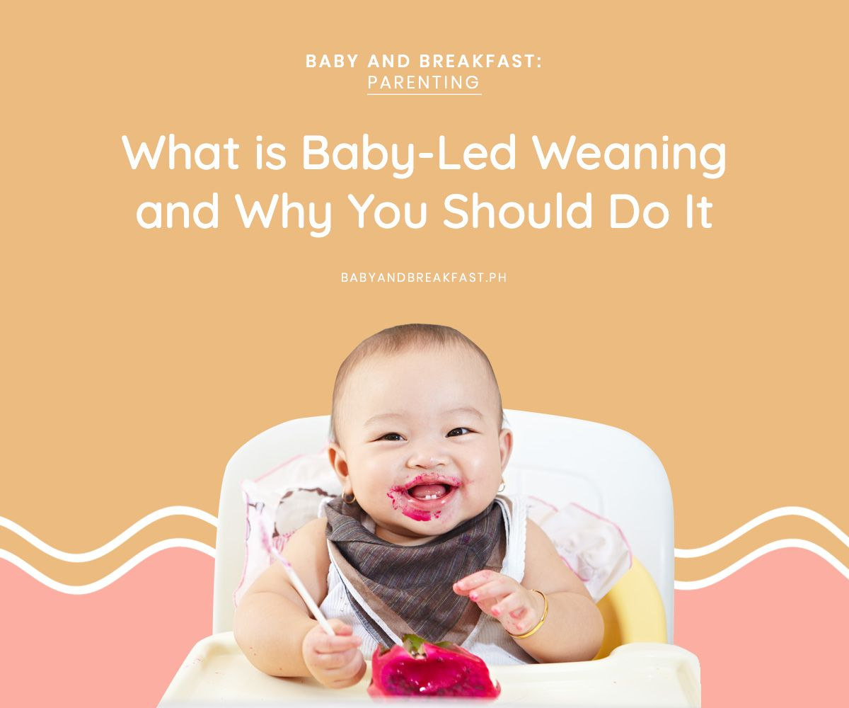 What is Baby-Led Weaning and Why You Should Do It | Baby ...