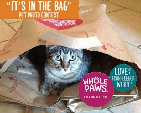 Whole Foods Market It's In the Bag Pet Photo Contest