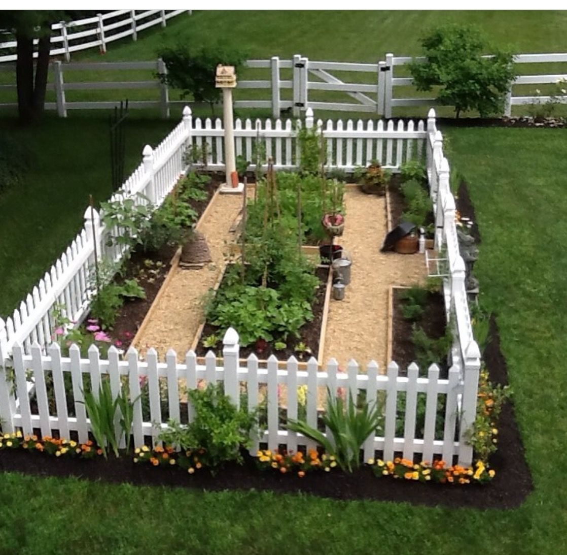 30 Amazing Ideas For Growing A Vegetable Garden In Your: Garden Layout Vegetable