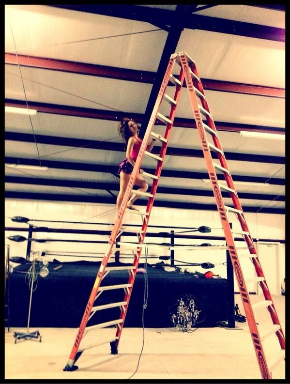 Even the WWE's Hardy Boys train with our ladders!