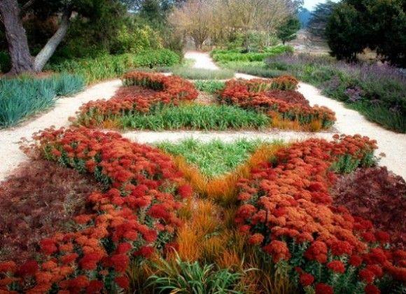 A modern loose knot garden using sedum a variety of drought