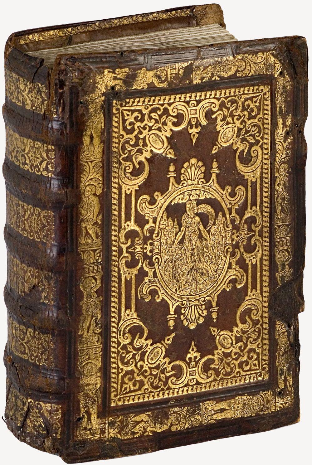 Pin Di Rosa Corvey Su Illuminated Manuscripts Libri Antichi Copertine Di Libri Copertina Libro