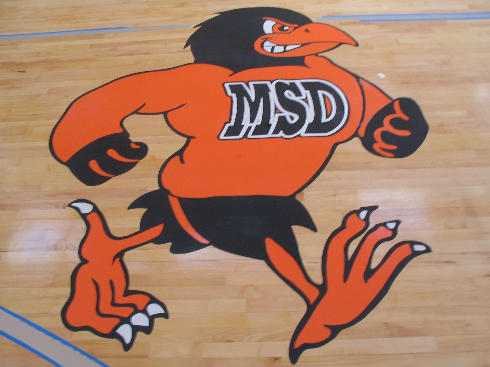 Brilliant Maryland School Of The Deaf Maryland Orioles Basketball Interior Design Ideas Helimdqseriescom