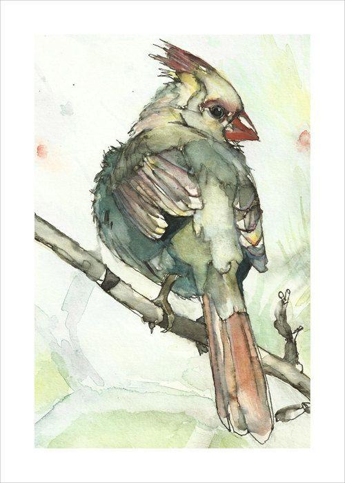 Cardinal Bird Art 5x7 Print- Light Green Watercolor and Ink Painting: