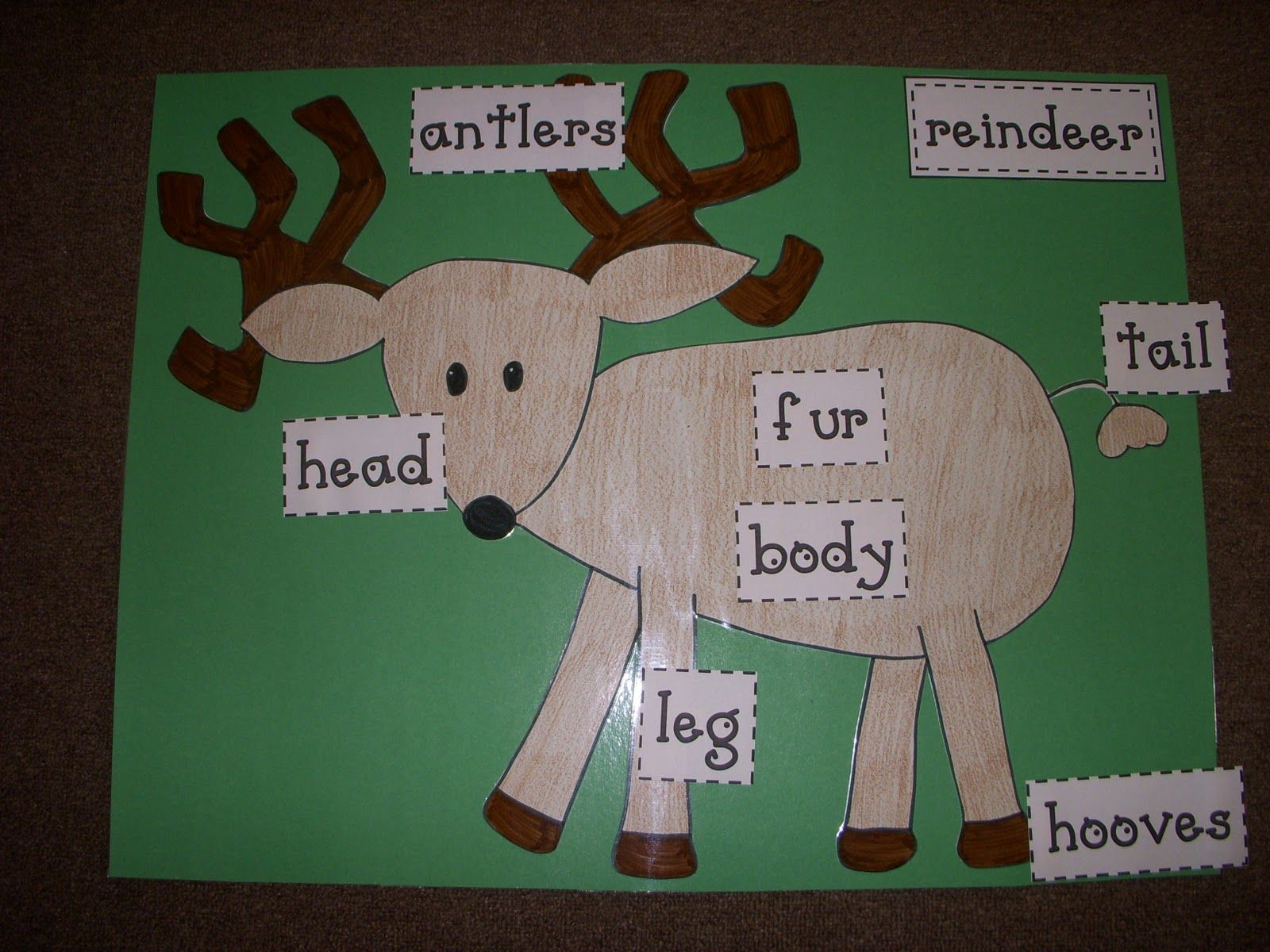 Reindeer Body Parts Labels Free From Mrs Pollard