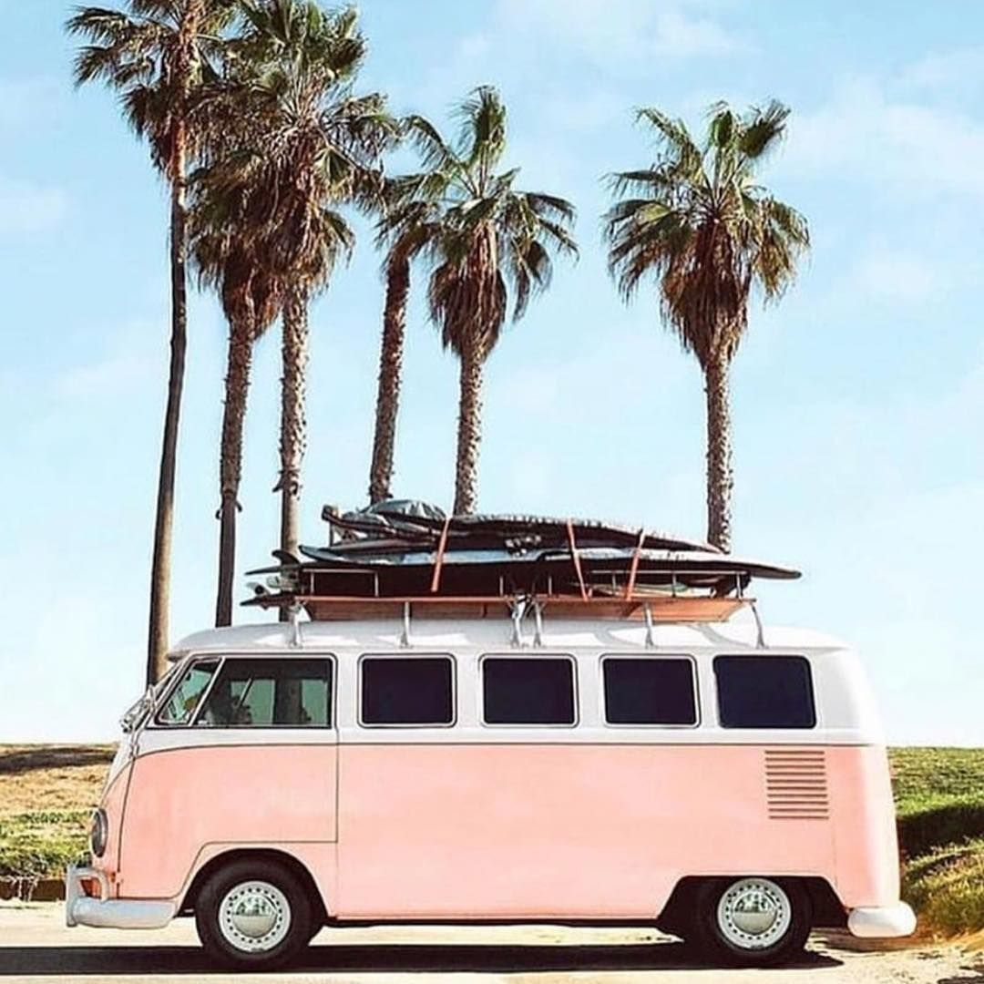A Pink Bus With Images Surfing Photo Venice Beach