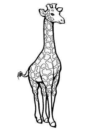 giraffe ausmalbild | ausmalbilder | Pinterest | Giraffen ...