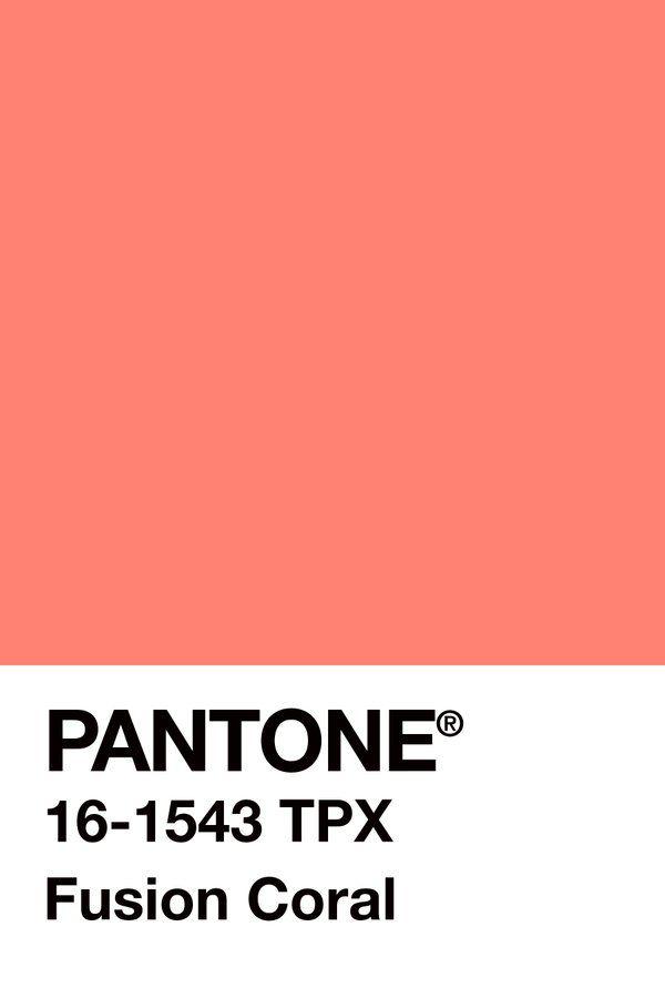 Cfoejhhweaeidcz Jpg 600 900 Pantone Color Plan Coral