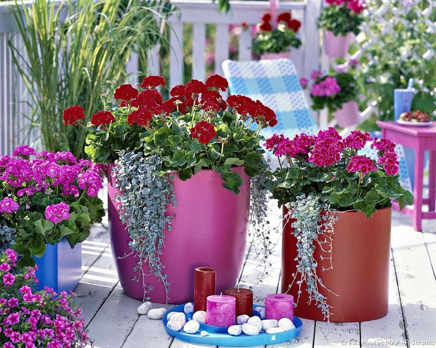 epingle sur jardinieres et pots de fleurs