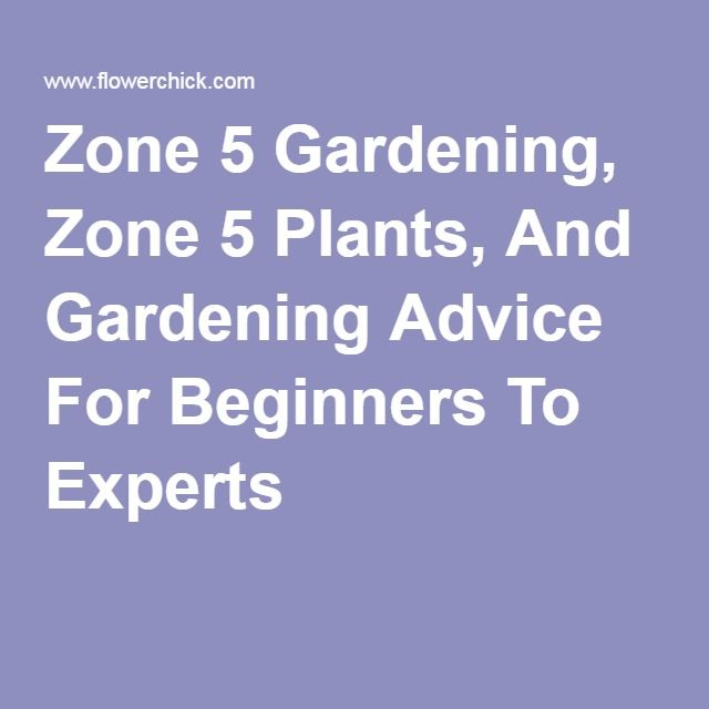 Zone 5 Gardening, Zone 5 Plants, And Gardening Advice For Beginners To  Experts