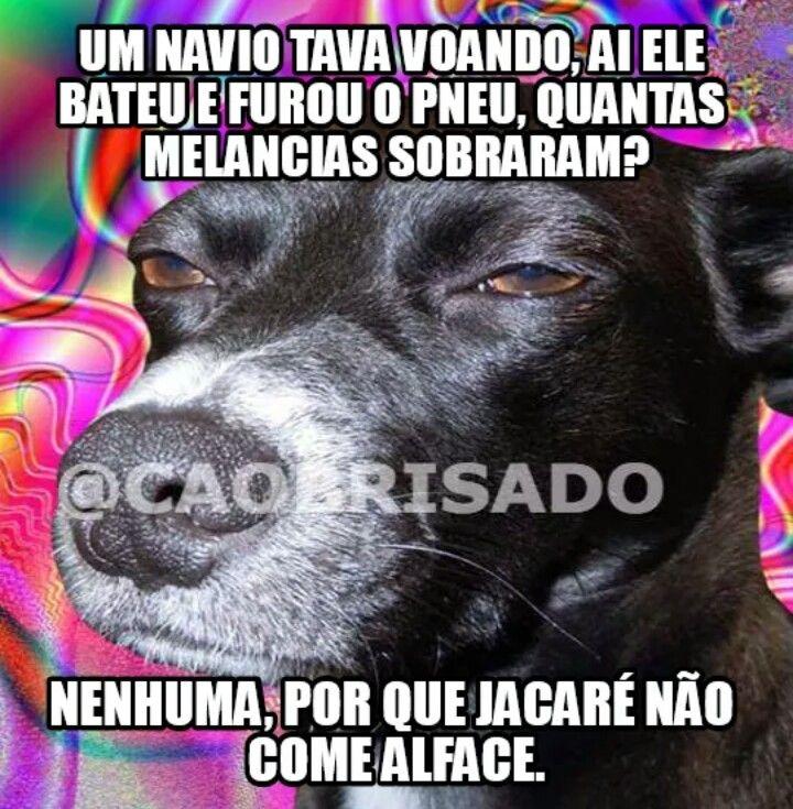 Pin De Rita Simoes Em Funny Engracado Memes Engracados Memes